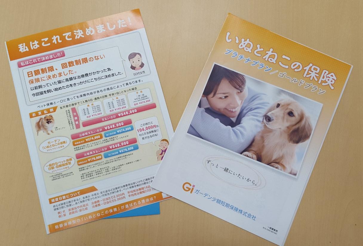 犬と猫の保険